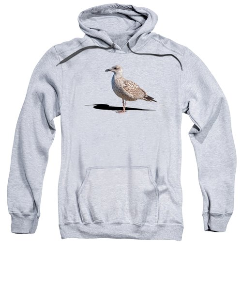 Daydreaming Sweatshirt by Gill Billington