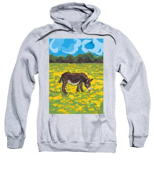 Donkey And Buttercup Field Sweatshirt by Sarah Gillard