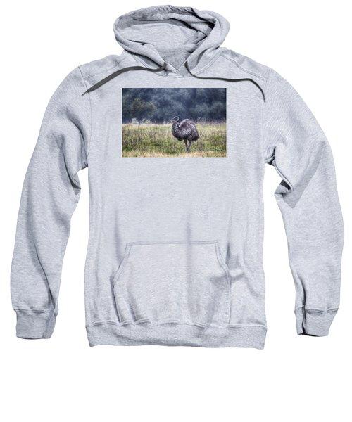Early Morning Stroll Sweatshirt by Douglas Barnard