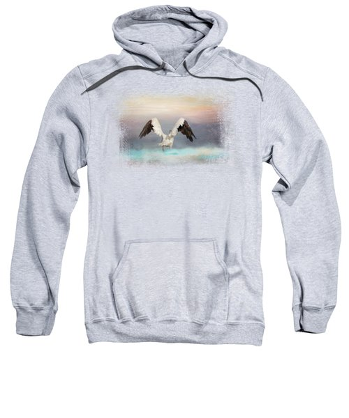 Early Morning Swim Sweatshirt by Jai Johnson