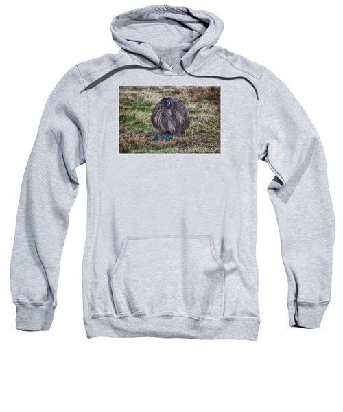 Feeling Kinda Broody  Sweatshirt by Douglas Barnard