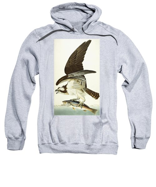 Fish Hawk Sweatshirt by John James Audubon