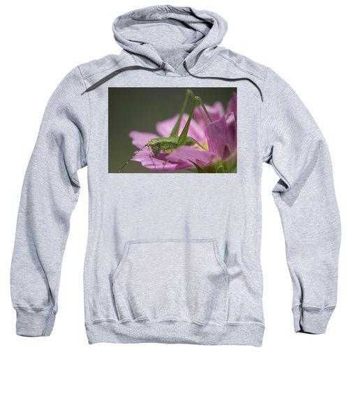 Flower Hopper Sweatshirt by Michael Eingle