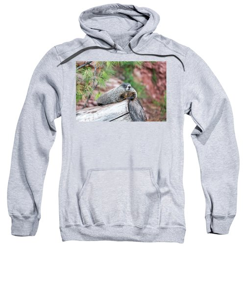 Groundhog On A Log Sweatshirt by Jess Kraft