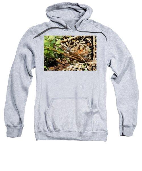 It's A Baby Woodcock Sweatshirt by Asbed Iskedjian