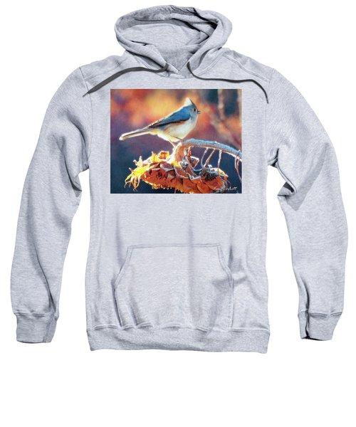 Morning Glow Sweatshirt by Ken Everett