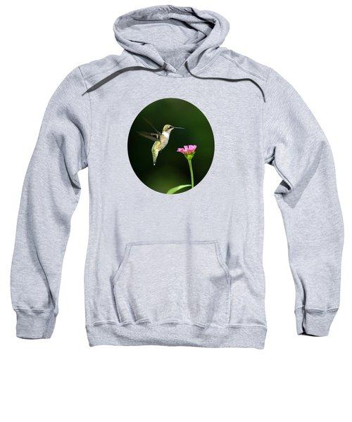 One Hummingbird Sweatshirt by Christina Rollo