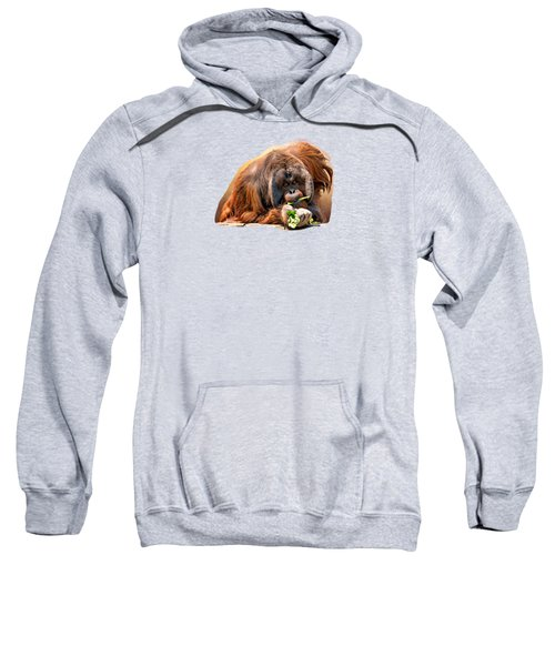 Orangutan Sweatshirt by Maria Coulson