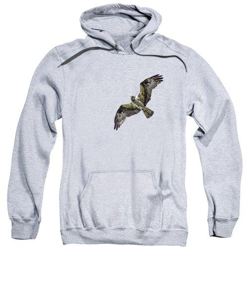 Osprey Overhead Sweatshirt by Nick Collins