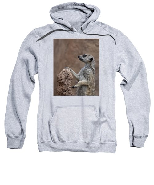 Pose Of The Meerkat Sweatshirt by Ernie Echols