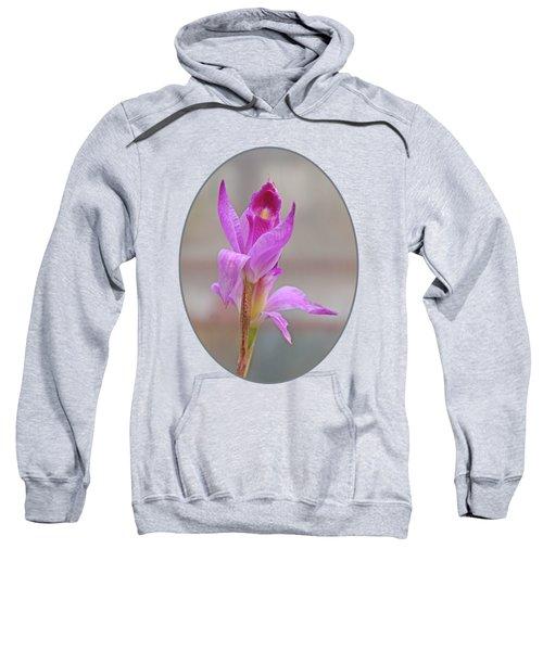 Purple Delight Sweatshirt by Gill Billington