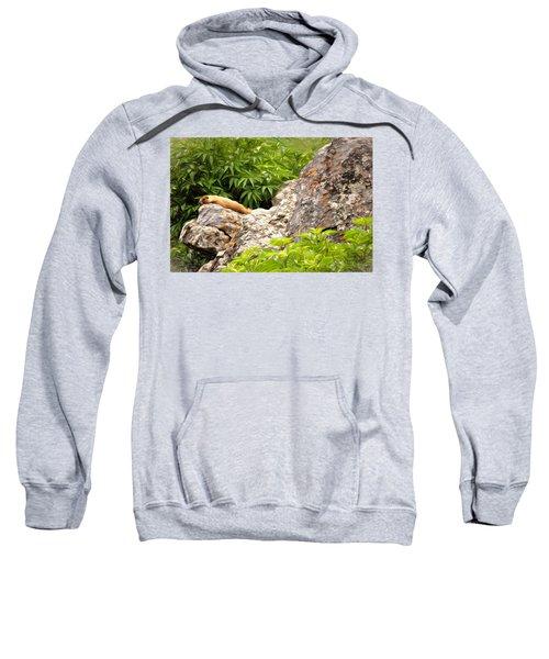 Rock Chuck Sweatshirt by Lana Trussell