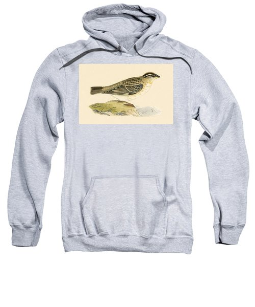 Rock Sparrow Sweatshirt by English School