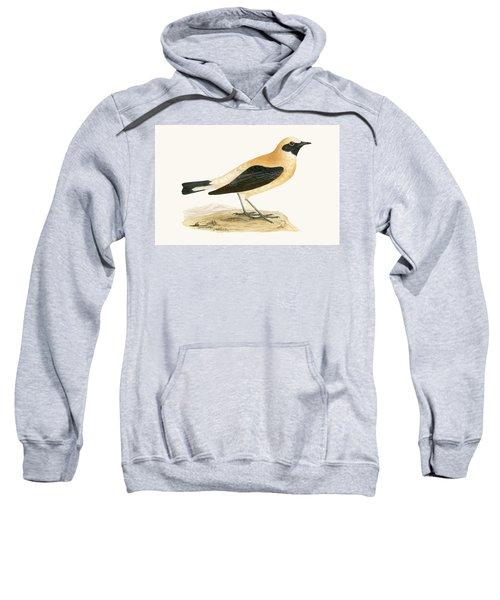 Russet Wheatear Sweatshirt by English School