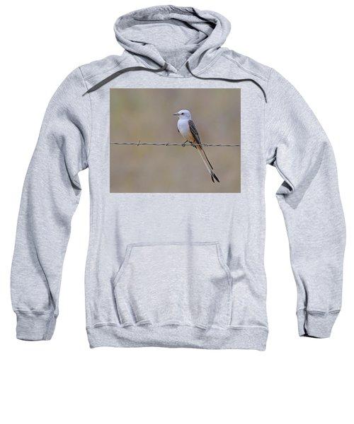 Scissor-tailed Flycatcher Sweatshirt by Tony Beck