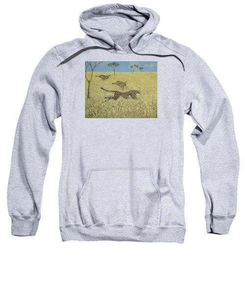Sheer Speed Sweatshirt by Pat Scott