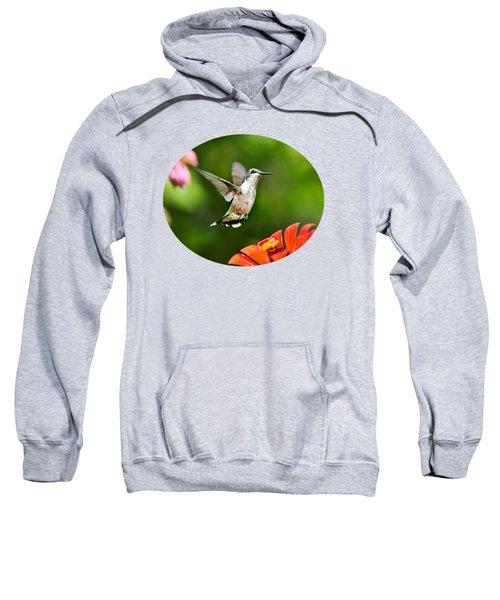 Shimmering Breeze Hummingbird Sweatshirt by Christina Rollo