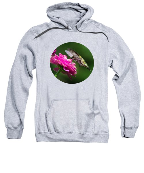 Simple Pleasure Hummingbird Delight Sweatshirt by Christina Rollo