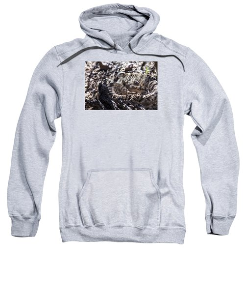 Snake In The Shadows Sweatshirt by Chuck Brown