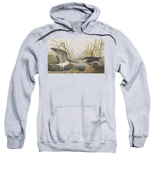 Solitary Sandpiper Sweatshirt by John James Audubon
