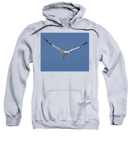 Speed Adjustment Sweatshirt by Tony Beck