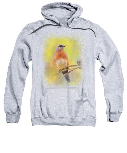 Spring Bluebird Painting Sweatshirt by Jai Johnson