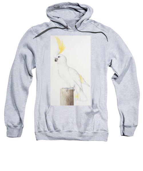 Sulphur Crested Cockatoo Sweatshirt by Nicolas Robert