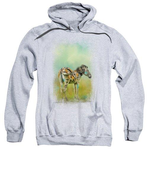 Summer Zebra 1 Sweatshirt by Jai Johnson