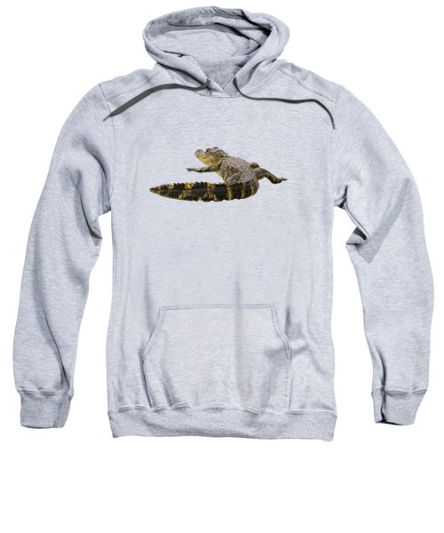 Sunning On The Shore Sweatshirt by Zina Stromberg