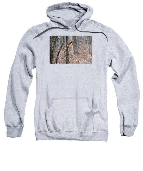 The American Woodcock In-flight Sweatshirt by Asbed Iskedjian