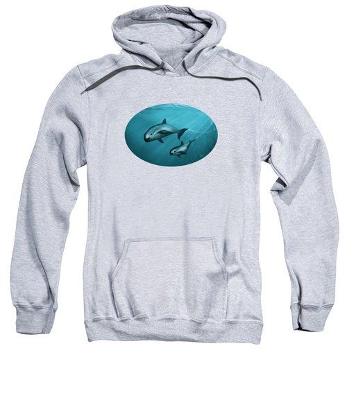Treacherous Waters Vaquita Porpoise Sweatshirt by Amber Marine