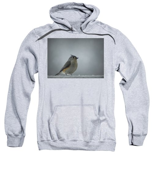 Tufted Titmouse In The Snow Sweatshirt by Cricket Hackmann