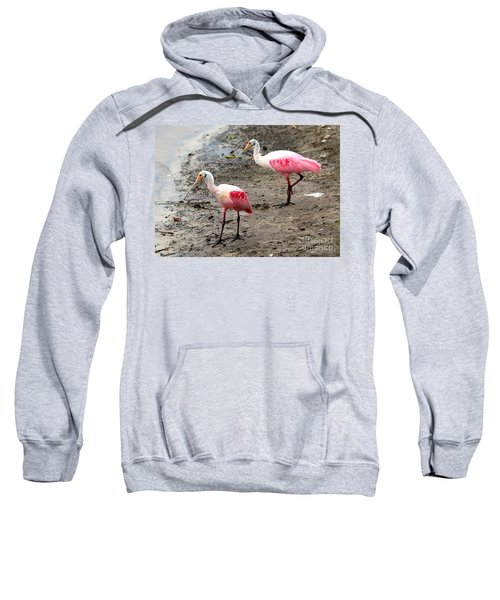 Two Roseate Spoonbills Sweatshirt by Carol Groenen