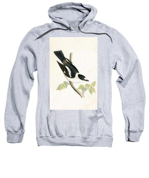 White Collared Flycatcher Sweatshirt by English School
