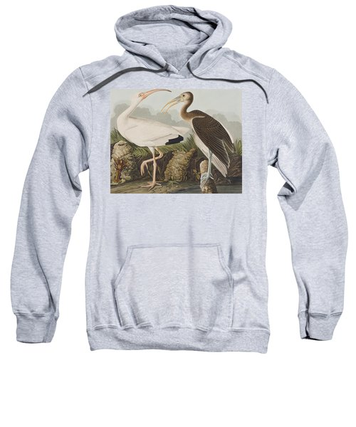 White Ibis Sweatshirt by John James Audubon