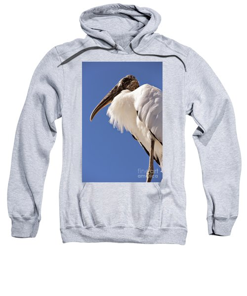 Wonderful Wood Stork Sweatshirt by Carol Groenen