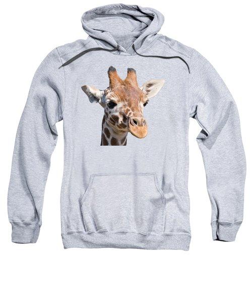 Young Giraffe  Sweatshirt by Scott Carruthers