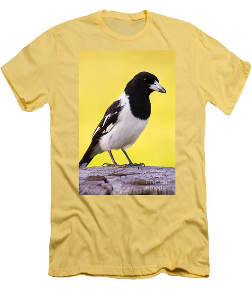 Fencepost Magpie Men's T-Shirt (Slim Fit) by Jorgo Photography - Wall Art Gallery