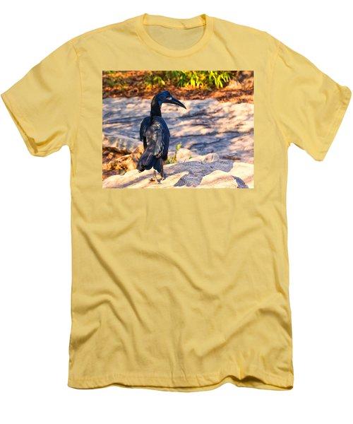 Abyssinian Ground Hornbill Men's T-Shirt (Slim Fit) by Chris Flees