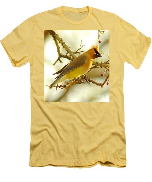 Cedar Waxwing Men's T-Shirt (Slim Fit) by Robert Frederick