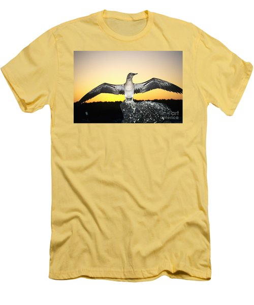 Booby At Sunset Men's T-Shirt (Slim Fit) by Dave Fleetham - Printscapes