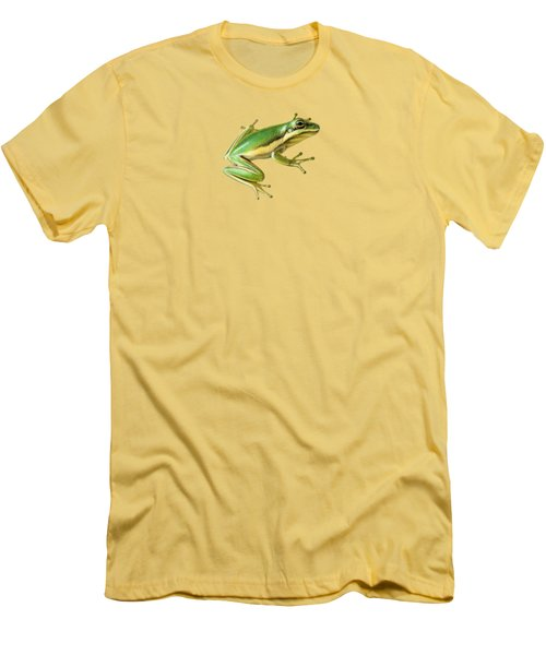 Green Tree Frog Men's T-Shirt (Slim Fit) by Sarah Batalka
