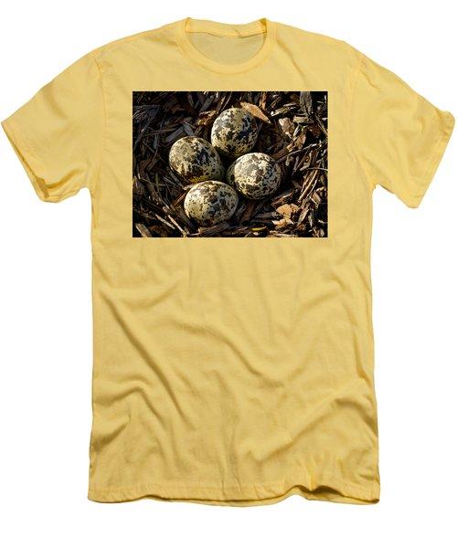 Quartet Of Killdeer Eggs By Jean Noren Men's T-Shirt (Slim Fit) by Jean Noren