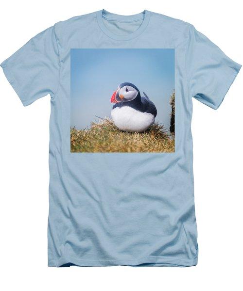 Atlantic Puffin Fratercula Arctica Men's T-Shirt (Slim Fit) by Panoramic Images