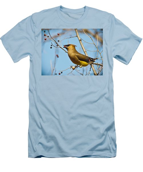 Cedar Waxwing With Berry Men's T-Shirt (Slim Fit) by Robert Frederick