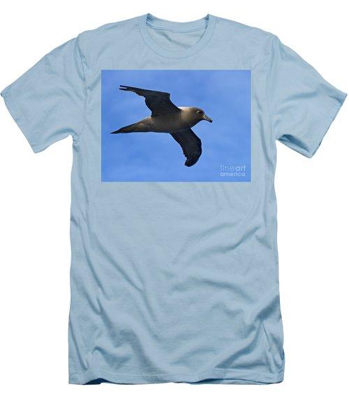 Pelagic Seabird... Men's T-Shirt (Slim Fit) by Nina Stavlund