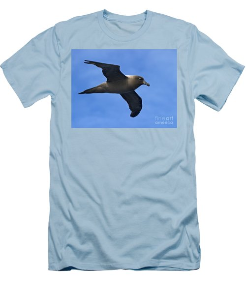 Pelagic Seabird... Men's T-Shirt (Slim Fit) by Nina Stavlund