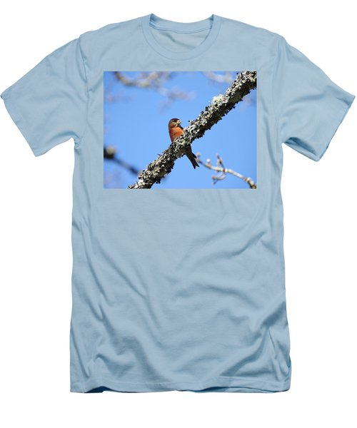 Red Crossbill Finch Men's T-Shirt (Slim Fit) by Marilyn Wilson
