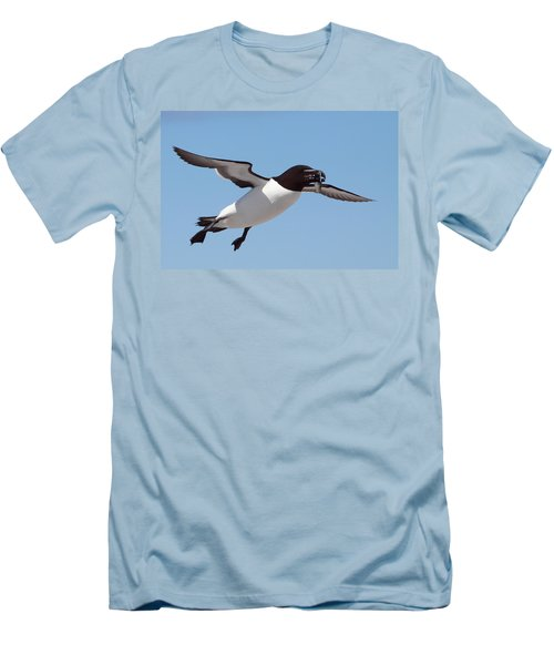 Razorbill In Flight Men's T-Shirt (Slim Fit) by Bruce J Robinson