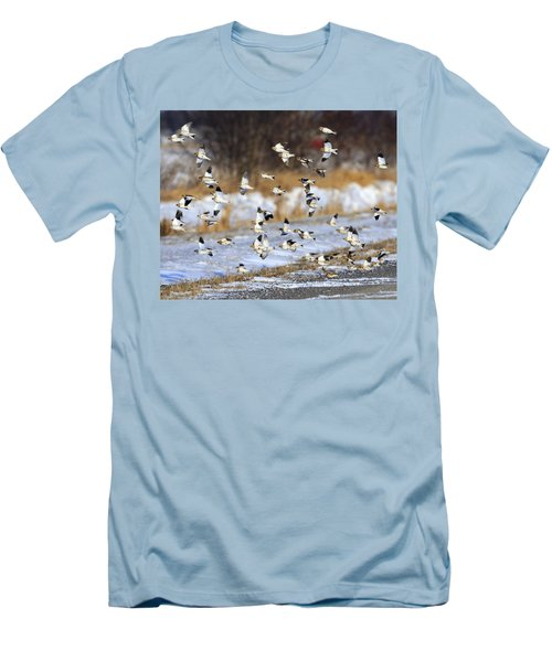 Snow Buntings Men's T-Shirt (Slim Fit) by Tony Beck